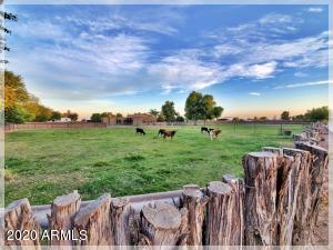 2950 E PIMA Road, San Tan Valley, AZ 85140