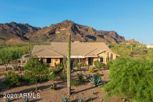 10242 E Open Sky Drive, Gold Canyon, AZ 85118