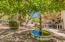 Multiple Fountains in Backyard