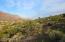 9368 E SKYLINE Trail, 10, Gold Canyon, AZ 85118