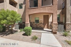 2821 S SKYLINE Drive, 156, Mesa, AZ 85212