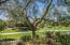 From Backyard view of Greenbelt
