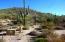 8300 E DIXILETA Drive, 65, Scottsdale, AZ 85266