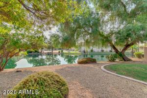 4660 S WILDFLOWER Drive, Chandler, AZ 85248