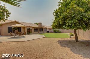 5914 W BLACKHAWK Drive, Glendale, AZ 85308