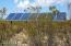242 E Reed Road, Tombstone, AZ 85638