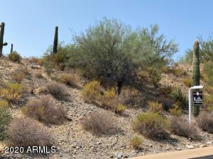 42004 N CHIRICAHUA PASS Pass, 295, Scottsdale, AZ 85262