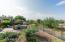 Rear Yard views