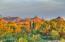 Beautiful views of Scottsdale's McDowell mountain range and Pinnacle Peak