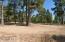 2420 S Pinyon Jay Drive, Flagstaff, AZ 86005