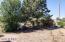 164 N PARTY Lane, Young, AZ 85554