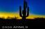 6999 E BLUE SKY Drive, Scottsdale, AZ 85266