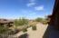 DESERT LANDSCAPE IN BACKYARD