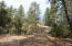885 E Forest Svc Rd 512, B, Young, AZ 85554