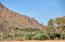 5600 N Saguaro Road, 14, Paradise Valley, AZ 85253