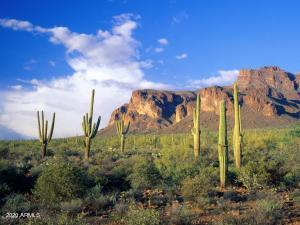 2669 S SOUTHFORK RANCH Road, Gold Canyon, AZ 85118