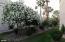 9460 N 92ND Street, 117, Scottsdale, AZ 85258