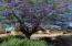 20479 N WISHING WELL Lane, Maricopa, AZ 85138