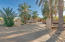Private Gated Entrance Flanked by Date Palms