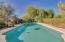Pool nestled into the serene environment