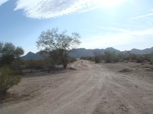 0 W Oak Road, 5, Maricopa, AZ 85139