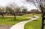 Green space and walking/biking trails