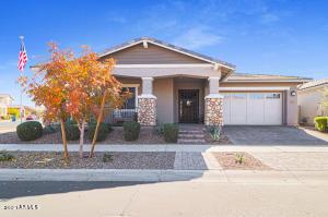 10149 E CINTRON Drive, Mesa, AZ 85212