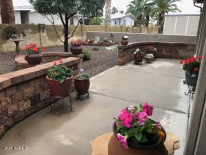 Awesome back yard!