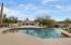Large beautiful private backyard