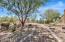 3955 E SIERRA VISTA Drive, Paradise Valley, AZ 85253