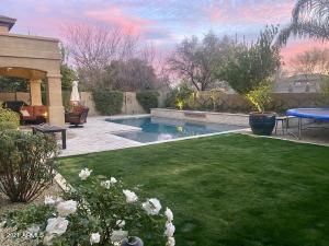Great yard with grass, cocktail trees (lemon, lime & orange) Pool and travertine extended patio