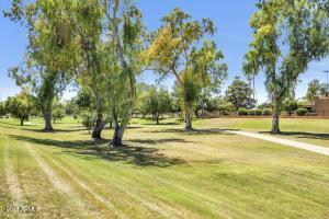 8742 E SAN RAFAEL Drive, Scottsdale, AZ 85258