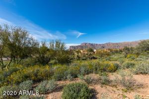4121 S CAMINO DE VIDA, 114, Gold Canyon, AZ 85118