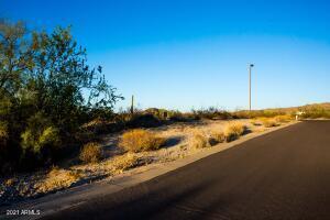 9231 S KRISTA Drive W, 55, Goodyear, AZ 85338