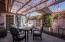 grapevines covered patio