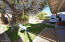 1652 E Detroit Street, Chandler, AZ 85225