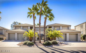 Beautiful Palm Tree Villas
