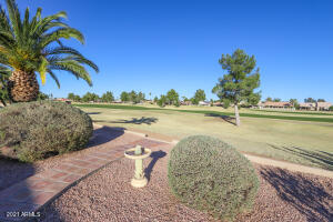 24825 S RIBBONWOOD Drive, Sun Lakes, AZ 85248