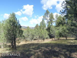 33 W Forest Svc Rd 200, 33, Young, AZ 85554