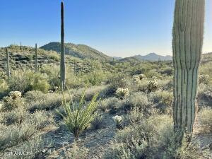 44XXX N Cottonwood Canyon Road, -, Cave Creek, AZ 85331
