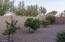5508 E PALO BREA Lane, Cave Creek, AZ 85331