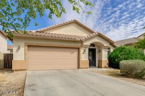 868 W VINEYARD PLAINS Drive, San Tan Valley, AZ 85143