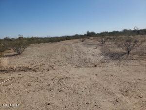 31339 W OSBORN Road, 201, Buckeye, AZ 85396