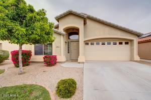 840 W Cedar Tree Drive, San Tan Valley, AZ 85143