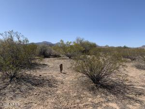 0 W Momoli Road, 115, Maricopa, AZ 85139