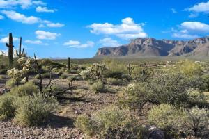 0 S Edgemore Road, -, Gold Canyon, AZ 85118