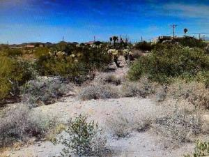 56xx E Singletree Street, -, Apache Junction, AZ 85119