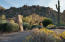 4.3 acres backing to Troon Mountains beautiful boulder display