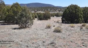 2S-B N State Route 288, B, Young, AZ 85554
