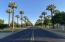 Beautiful Old Litchfield Road lined with mature trees!
